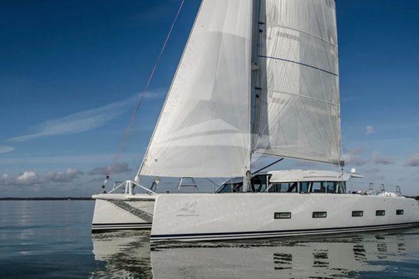 Luxury catamaran Cygnus Cygnus