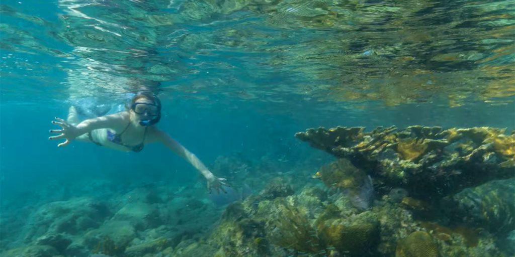 Family yacht vacation offers many activities on board. Snorkeling and swimming top the list of favorite family activities.